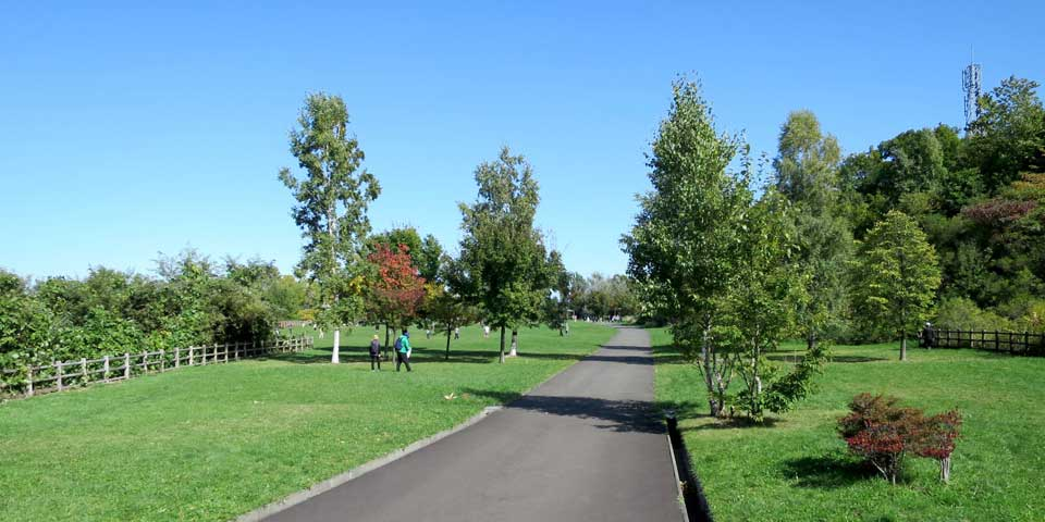 宮丘公園の写真:遊歩道